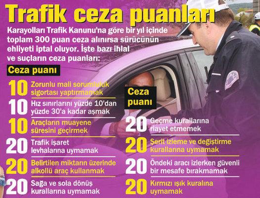 ehliyet-ceza-puani